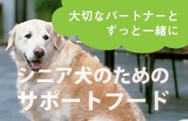 シニア犬のためのサポートフード