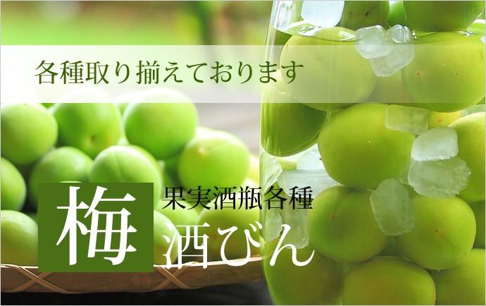 梅酒瓶 梅酒びん