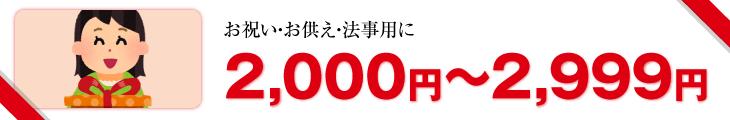 2,000円?2,999円