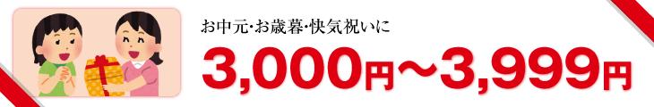 3,000円以上3,999円