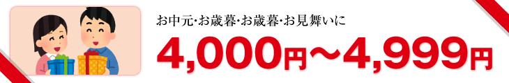 4,000円以上4,999円
