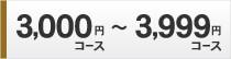 3000円コース〜3999円コース