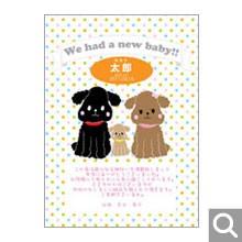 出産内祝用オリジナル化粧箱【D-1-MBR】