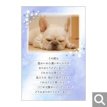 香典返し(ペット向け)用メッセージカード【BK-14】