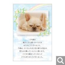 香典返し(ペット向け)用メッセージカード【BK-16】