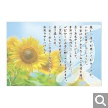 季節のイベント用メッセージカード【MIF-11】