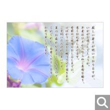 季節のイベント用メッセージカード【MIF-12】