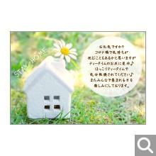 季節のイベント用メッセージカード【MIF-20】