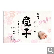 出産内祝用メッセージカード【S-46】