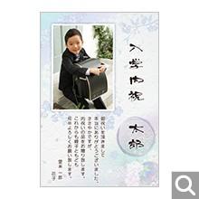 入学内祝い用メッセージカード【SE-05】