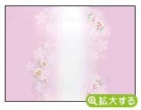各種内祝用のし紙【N-2 舞華】