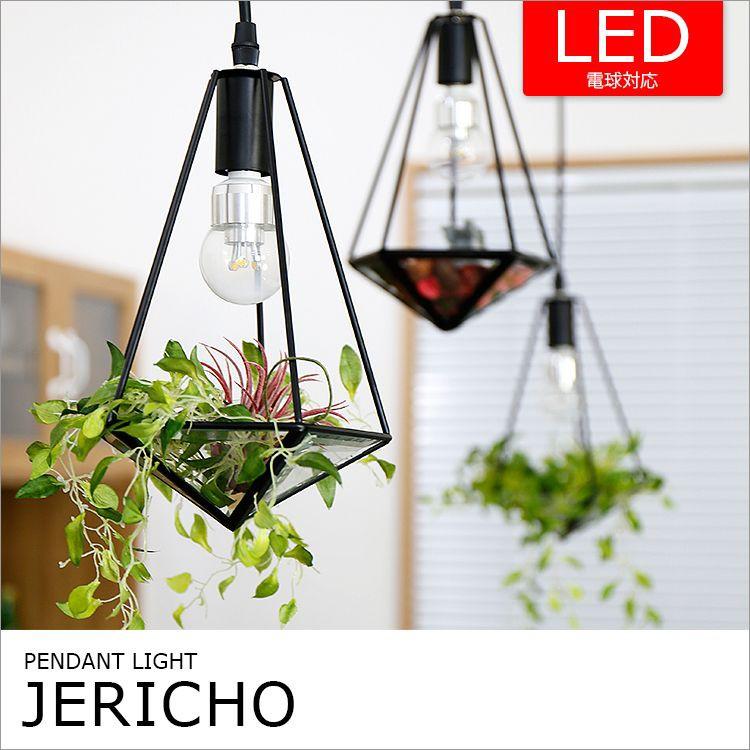 ペンダントライト「JERICHO(ジェリコ)」の画像。テラリウムをイメージしたオリジナルペンダントライト「JERICHO(ジェリコ)」。シェードは下部がガラス貼りになっており、ディスプレイが可能。植物に限らず、小物などを乗せてあなただけのオブジェライトに変身。