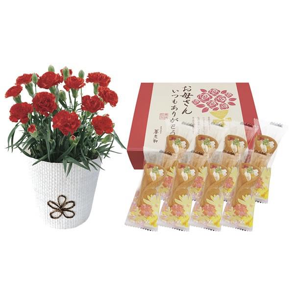 【送料無料】【母の日】母の日 カーネーション&京のミニブーケスイーツセット KAS-01【ギフト館】