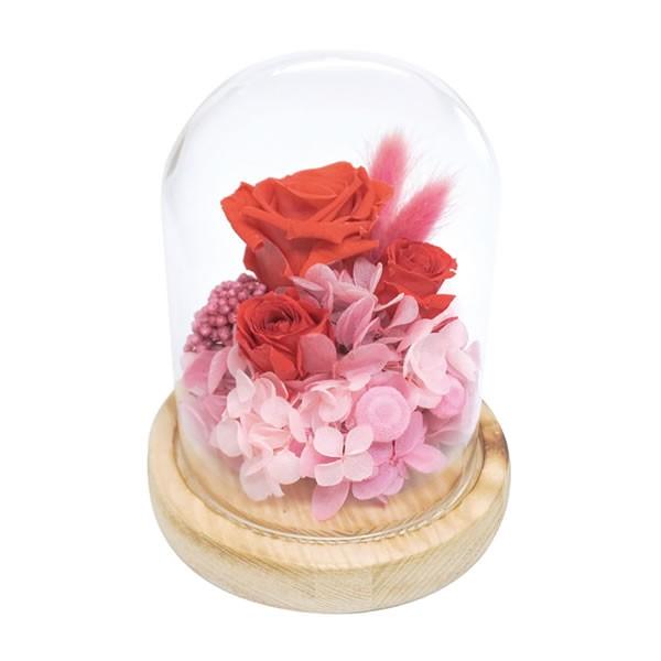 【送料無料】【母の日】母の日 ガラスドームアレンジメントソレイユ/レッド B12410S【ギフト館】