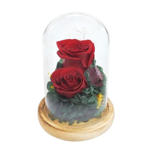 【送料無料】【母の日】母の日 ガラスドームアレンジメントコンパシオン/レッド B12510【ギフト館】