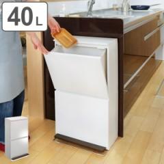 分別ゴミ箱 縦型 2段 薄型 ワイド 40L ベーシックカラー