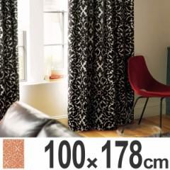 カーテン スミノエ ドレープカーテン ネクストホーム Dressy ディグニティー 100x178cm