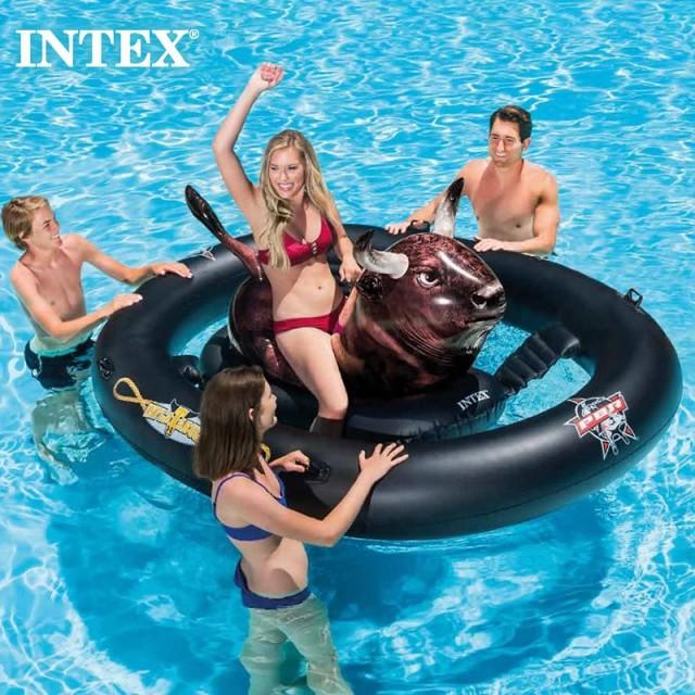 イルカの浮き輪