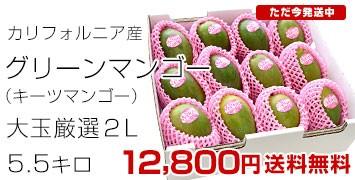 グリーンマンゴー5.5キロ
