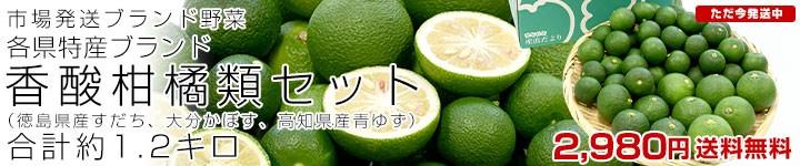 香酸柑橘類セット