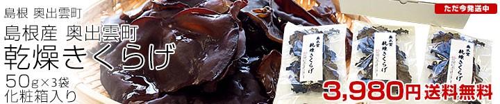 乾燥キクラゲ