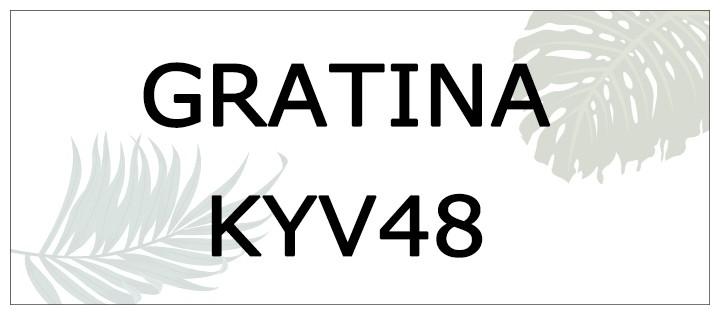 kyv48