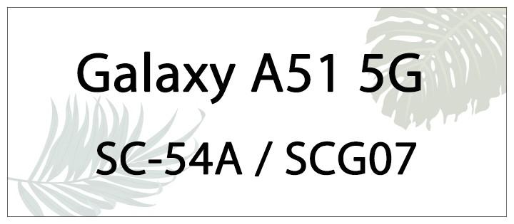 sc54a