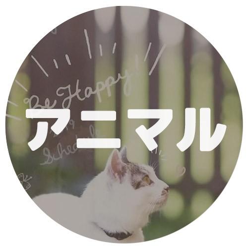キャラクター手帳 2019アニマル
