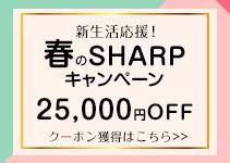 25000円OFFクーポン