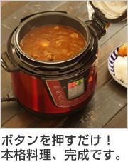 Wonder chef ワンダーシェフ 家庭用マイコン電気圧力鍋 3L レシピ本付き
