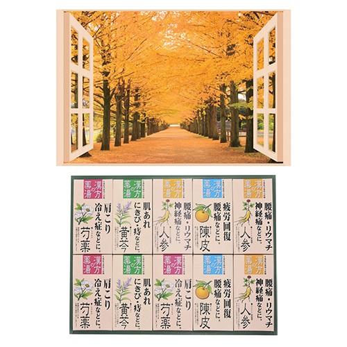 昭プラ お風呂のポスター 四季彩 銀杏並木 + 薬用...