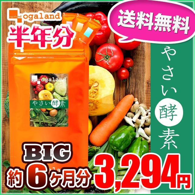 ★半年分セール★BIGやさい酵素(半年分)送料無料 ...