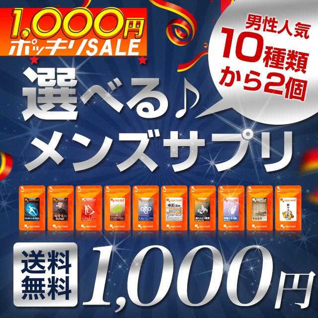 ◆ぽっきりセール◆選べるメンズサプリ(各約1ヶ...