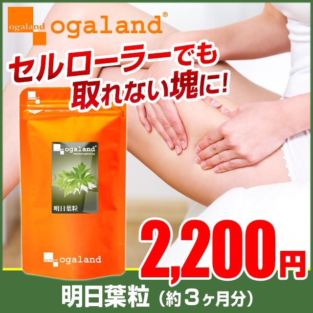 お徳用明日葉粒(約3ヶ月分)3150円以上送料無料 八...