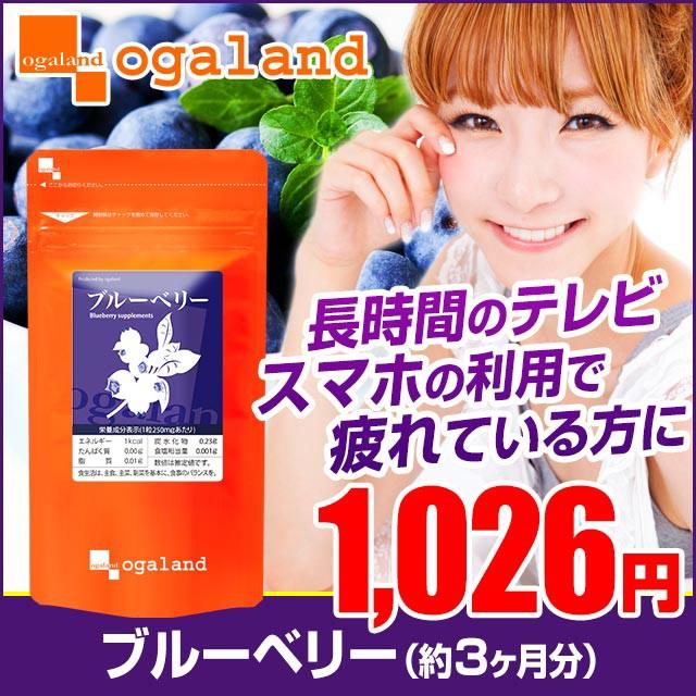 お徳用ブルーベリー(約3ヶ月分)3150円以上送料無...