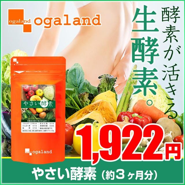 お徳用やさい酵素(約3ヶ月分)3150円以上送料無料 ...