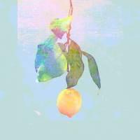 CD / 米津玄師 / Lemon (通常盤)