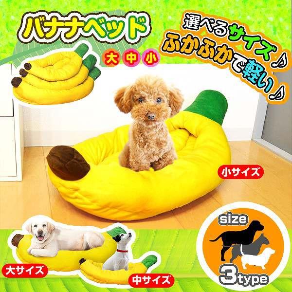 猫ちゃん・小型犬〜大型犬★ポップなカラーでなん...