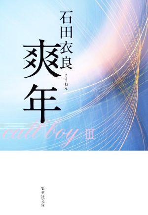 【中古】 爽年 集英社文庫/石田衣良(著者)