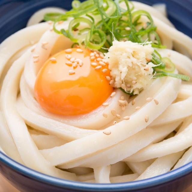 うどん 9食 極太麺 北海道産小麦100% 饂飩 乾麺 9...