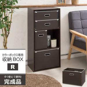 送料無料 カラーボックス専用収納BOX-R(レギュラ...