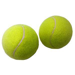 送料無料 (まとめ)硬式テニスボール 2P【×2個...