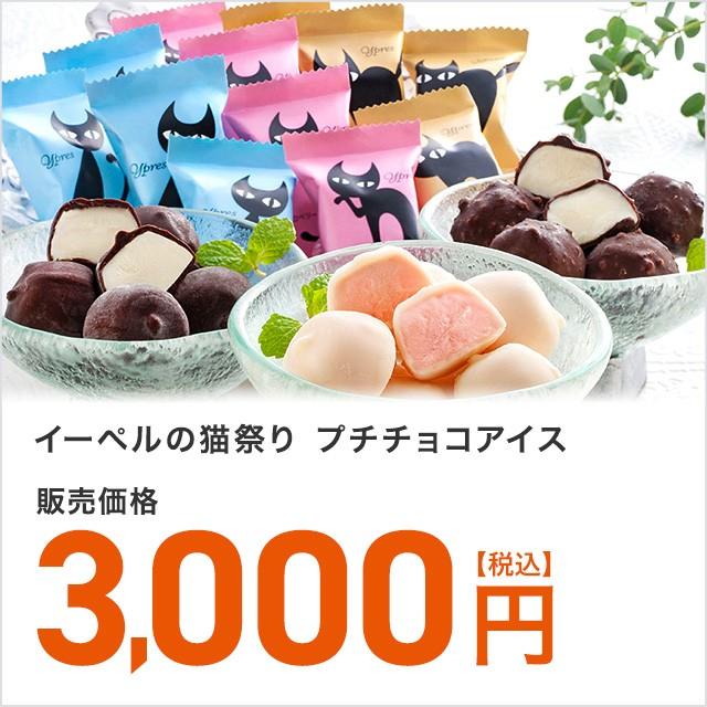 イーペルの猫祭り プチチョコアイス 3種40個 ひとくちアイス 大容量 ポイント交換 小分け おやつ