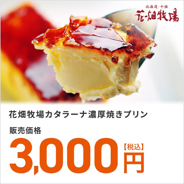 スイーツ 花畑牧場 カタラーナ濃厚焼きプリン 1kg 北海道
