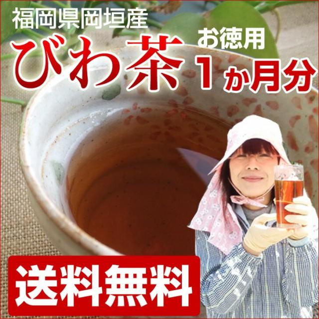 びわの葉茶 1か月分 30袋入  無農薬