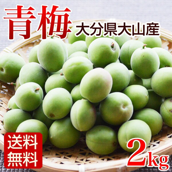 青梅 2kg 梅酒用 鶯宿梅 生梅 大分県大山産