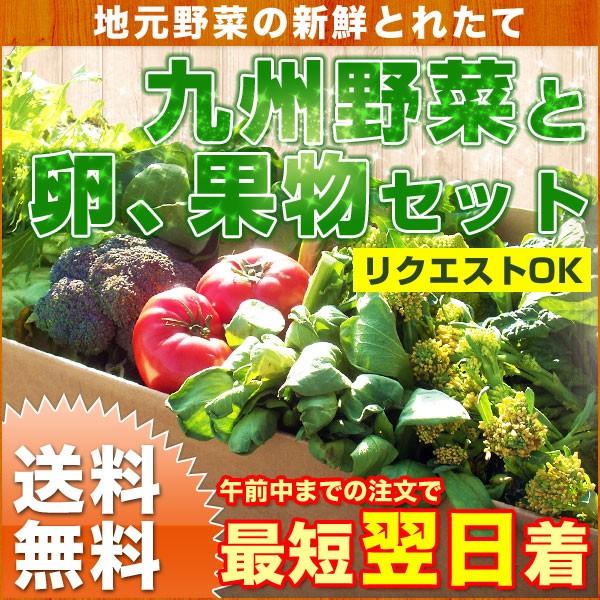 九州野菜と卵、果物セット 新鮮野菜10品以上と卵...