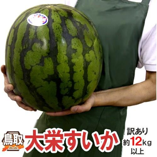 """【送料無料】鳥取県 """"ジャンボ大栄すいか"""" 訳あ..."""