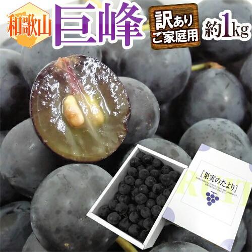 """【送料無料】和歌山産 """"巨峰"""" 満杯詰 約1kg 化..."""