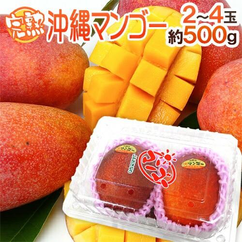 """沖縄産 """"ミニマンゴー"""" 秀品 2〜4玉 約500g パ..."""